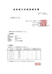 放射能分析結果報告書